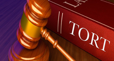 INTENTIONAL TORT PERSONAL INJURY LEADS